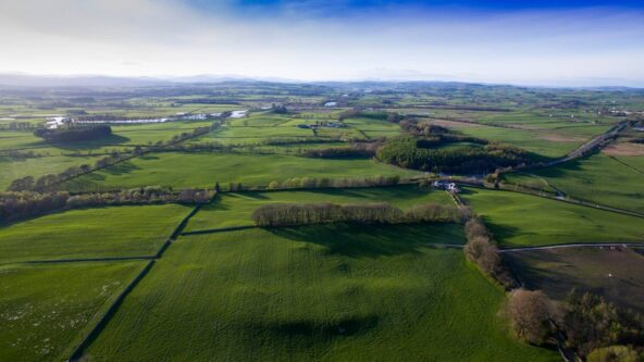 Threave Landscape Restoration Project: 100-year vision to restore ecosystems