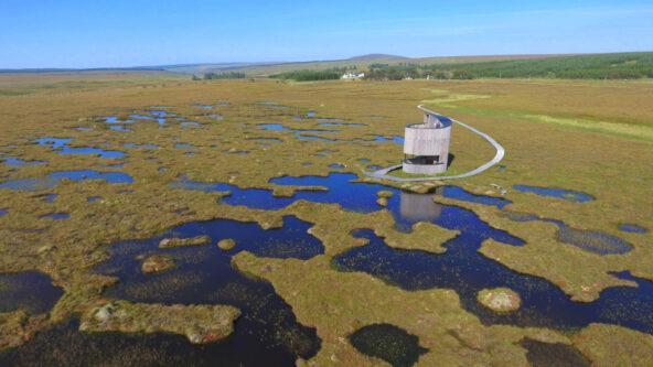 Virtual guided walk – exploring a peatland pool system